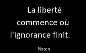 citation-7884